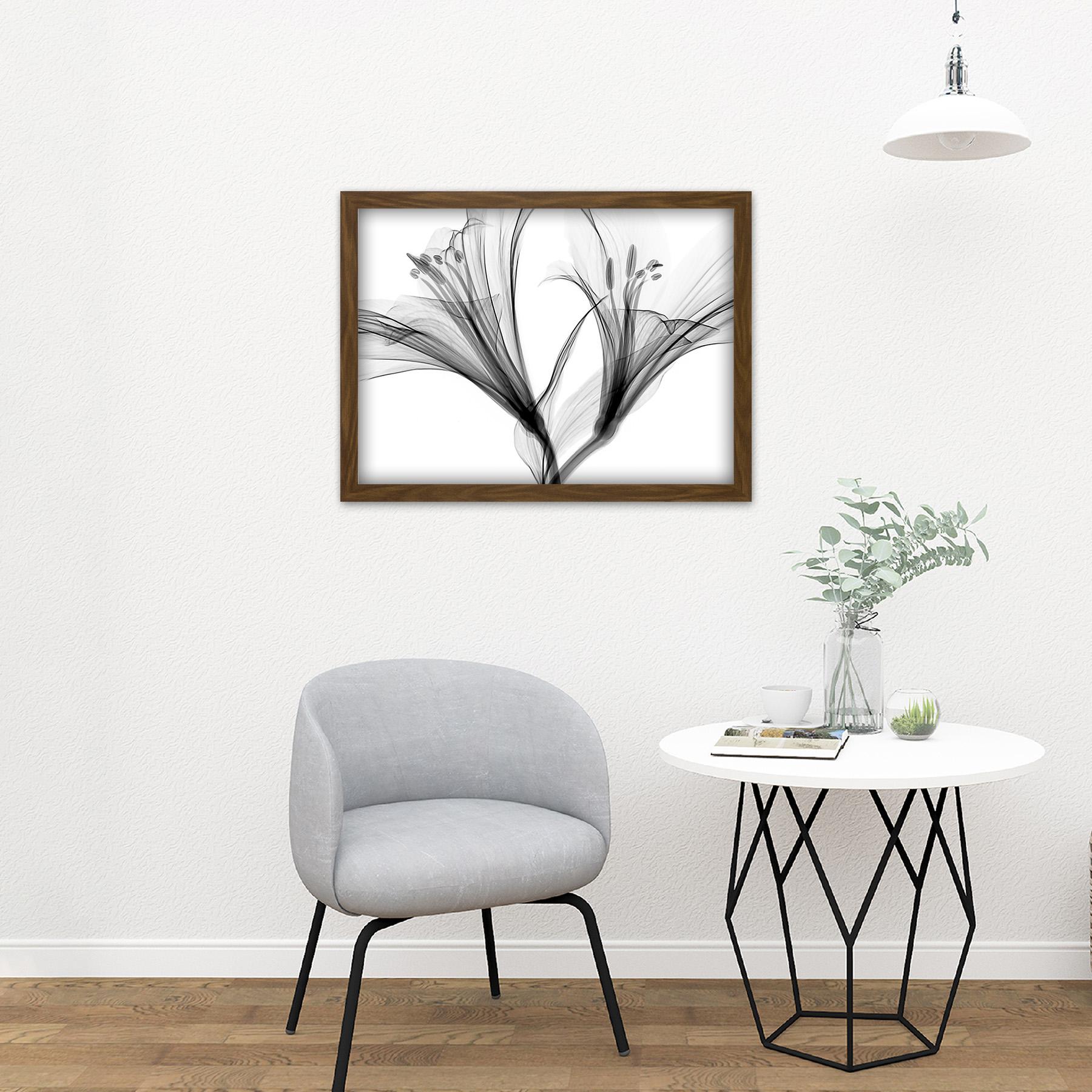 Schwartz NJIT grises Flores rayos X transparente foto enmarcada pared arte impresión