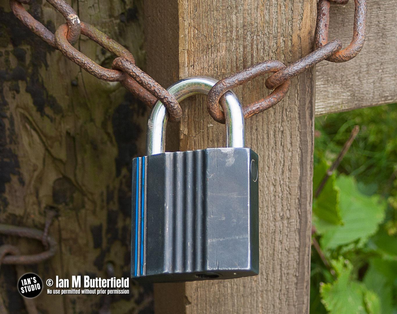 BLOG 2 NOV 2020 – Lockdown20 Challenge