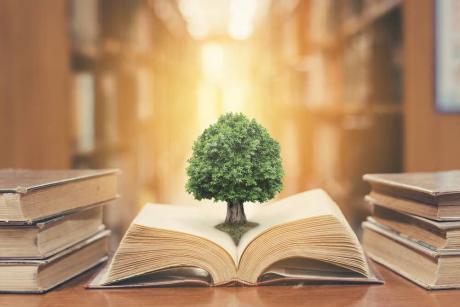 Life Learning Bundle