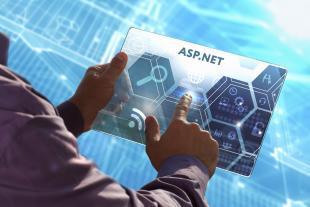 ASP.NET Intermediate Level Video Course