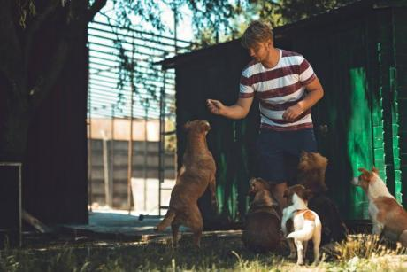 Certificate in Animal Psychology and Behaviourism