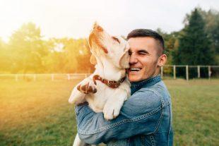 Animal Care Course Bundle