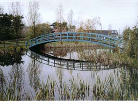 Large Teal Bridge