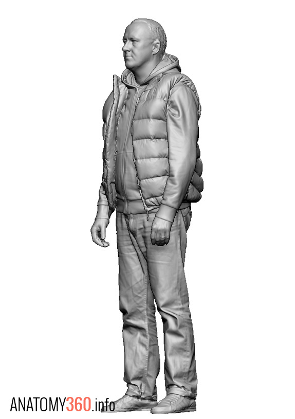 Male02_Puffer_Hoodie2_FQuarter