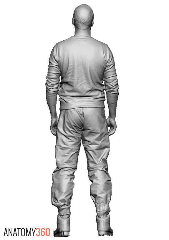 Male02_Walking_Arms_Down_Back