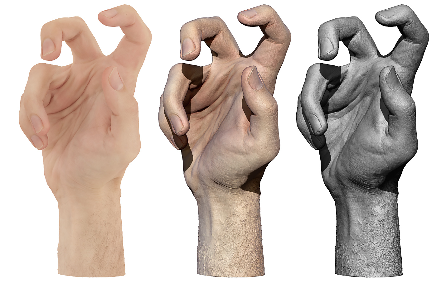 HandColour