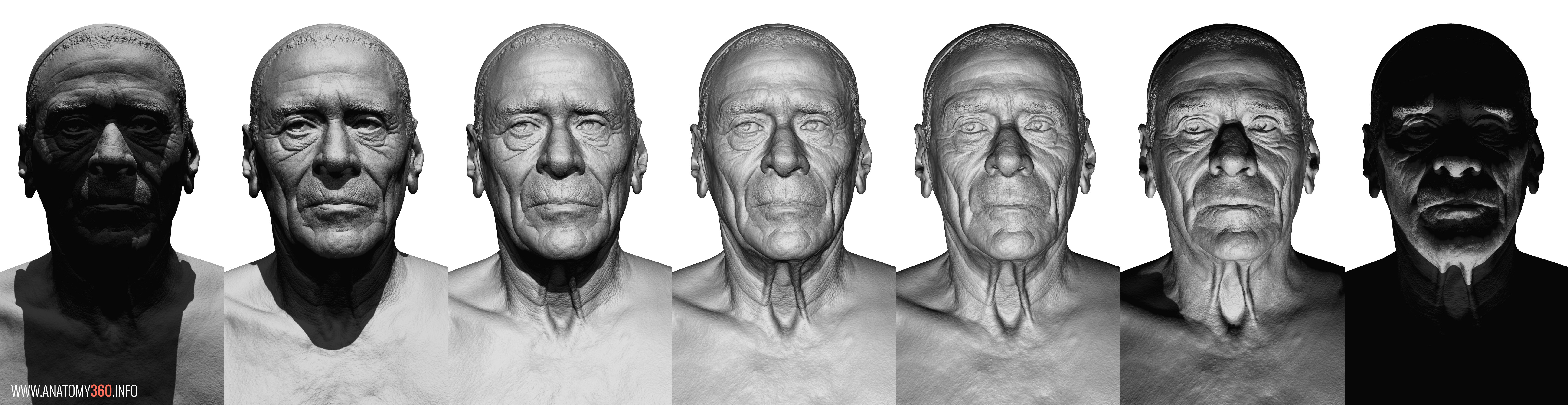 Lighting-02_S  sc 1 st  Anatomy 360 & Head and Face Reference | Anatomy 360 azcodes.com