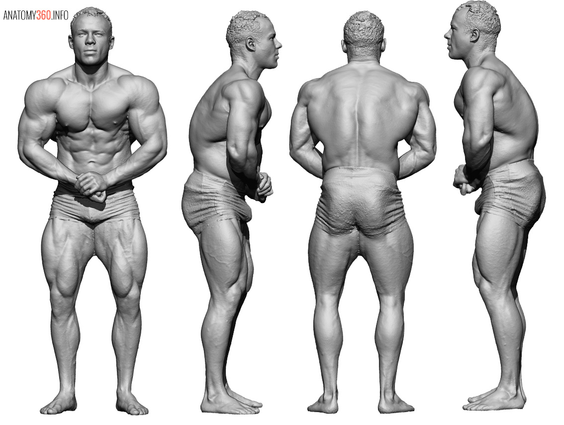 Female anatomy for whiteboys iii 4
