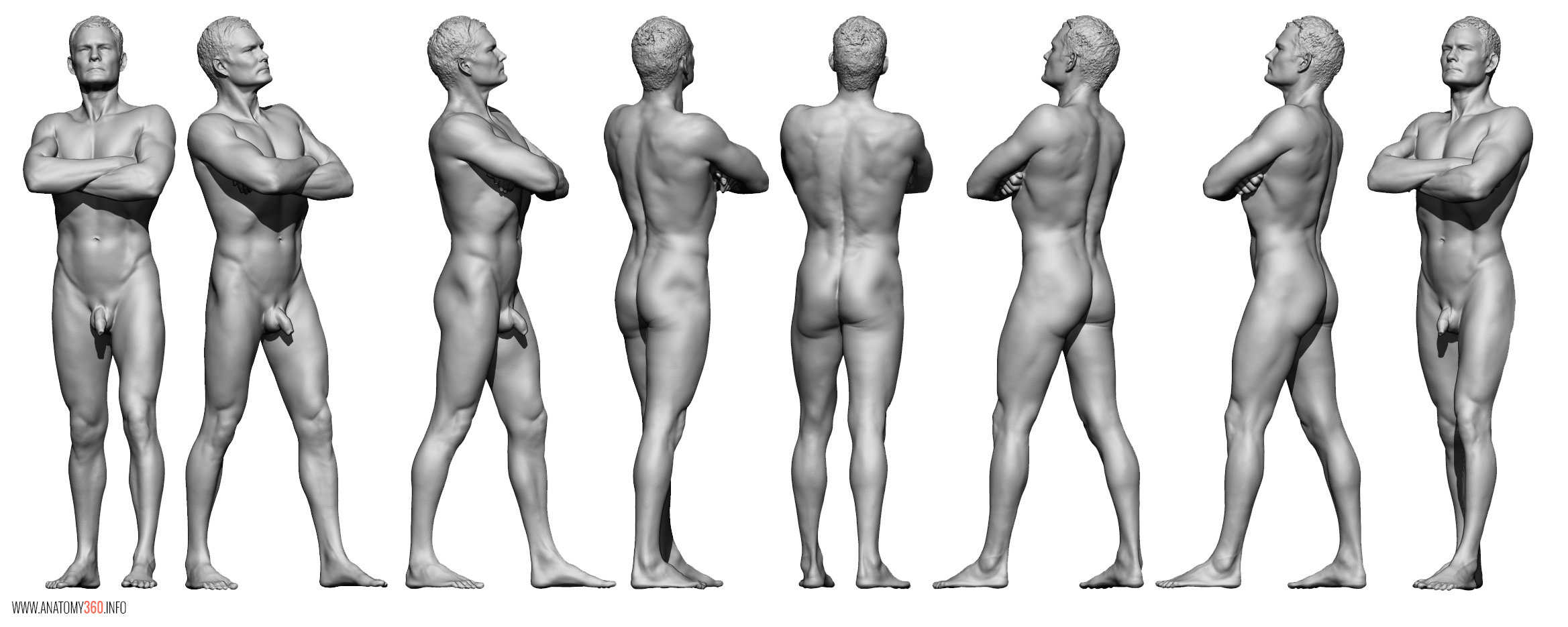 AnatomyReference_01