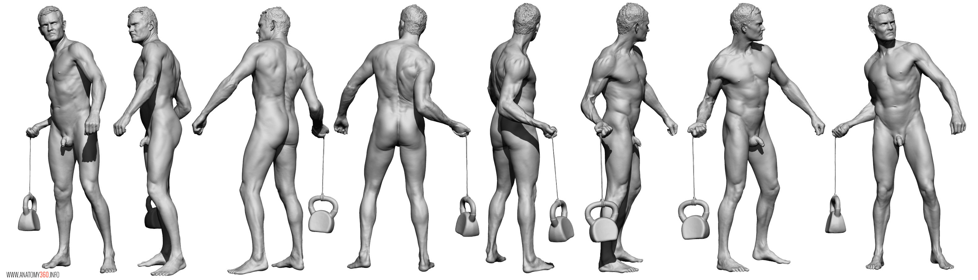 AnatomyReference_010