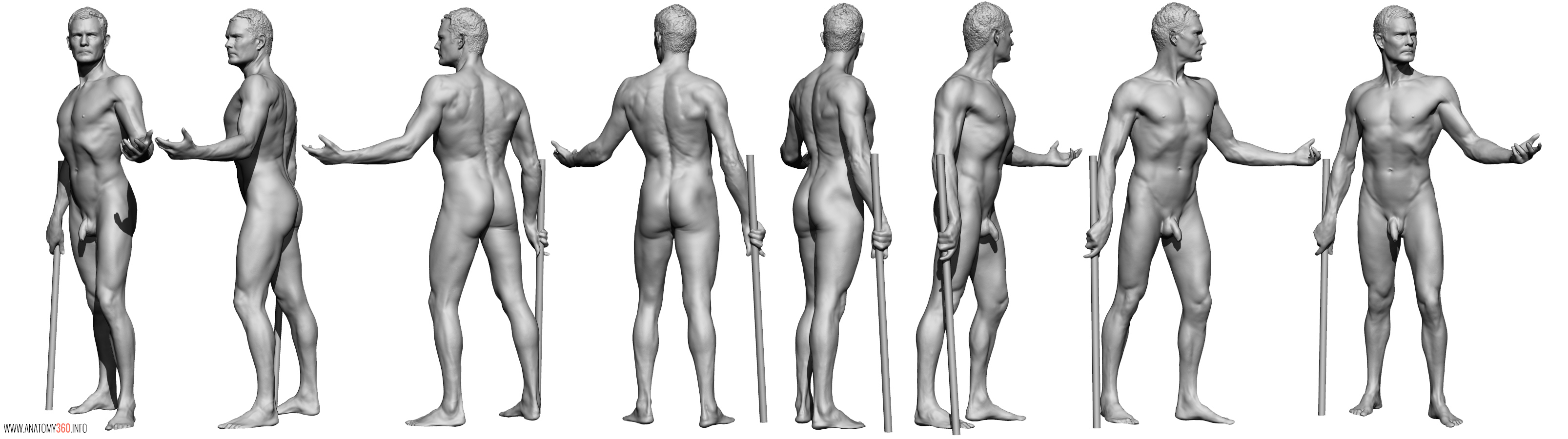 AnatomyReference_08