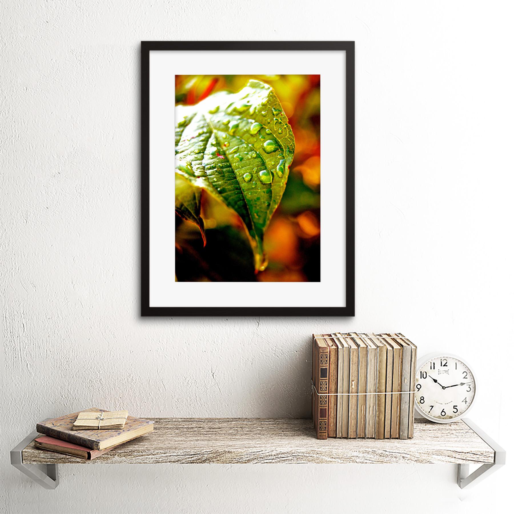 Photo-Leaf-Water-Drop-Green-Nature-Framed-Print-12x16-Inch miniatuur 3