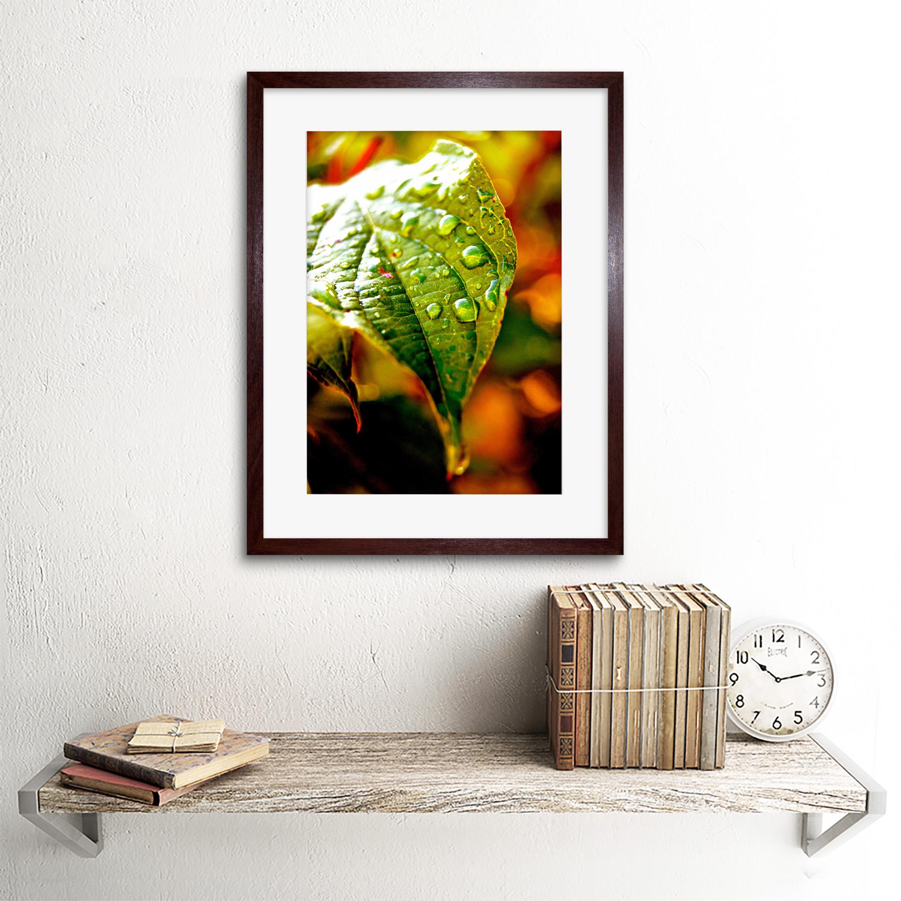 Photo-Leaf-Water-Drop-Green-Nature-Framed-Print-12x16-Inch miniatuur 8