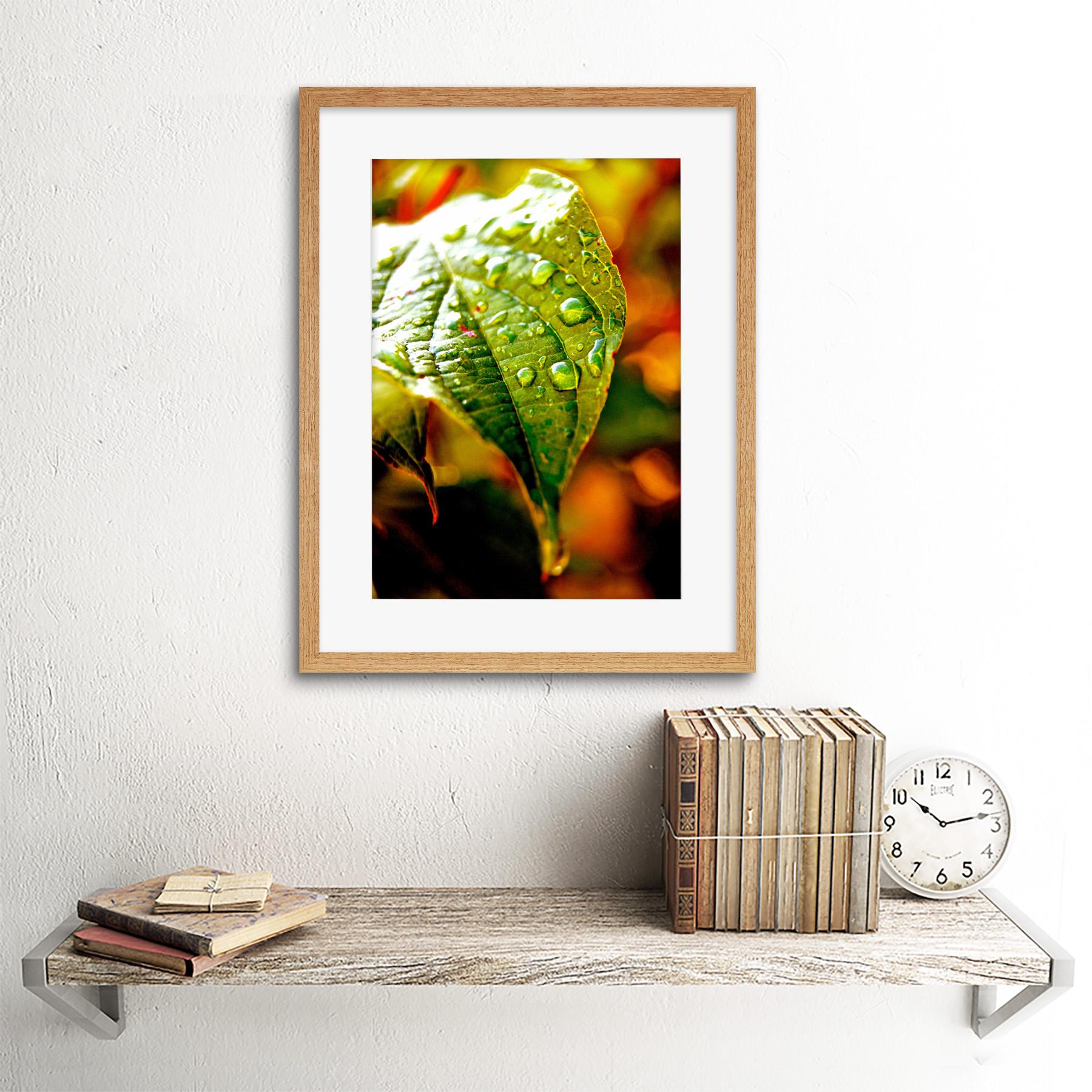 Photo-Leaf-Water-Drop-Green-Nature-Framed-Print-12x16-Inch miniatuur 13