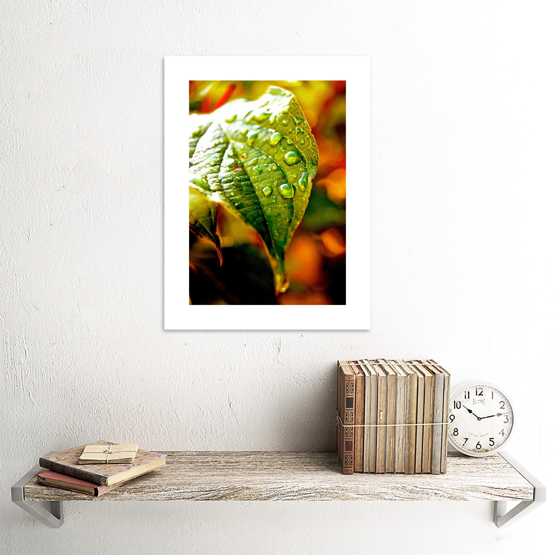 Photo-Leaf-Water-Drop-Green-Nature-Framed-Print-12x16-Inch miniatuur 18