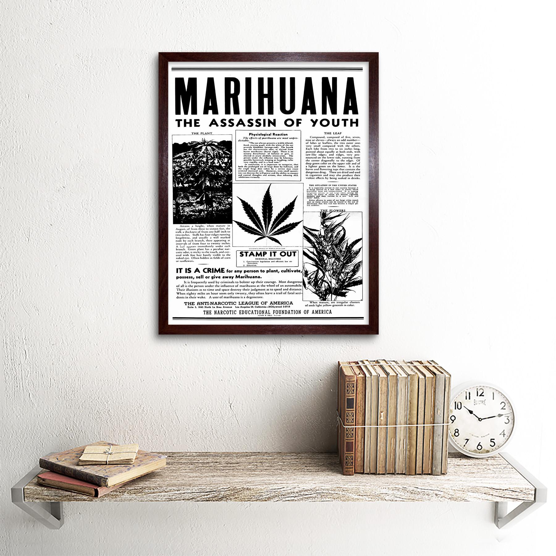 Паника конопля сколько времени света марихуане