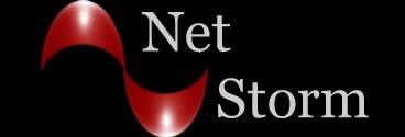 Net Storm - Internet and Web Design Services