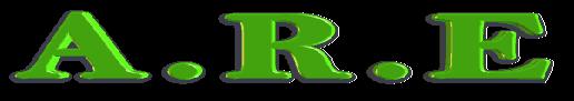 A.R.E High-performance Engine R&D