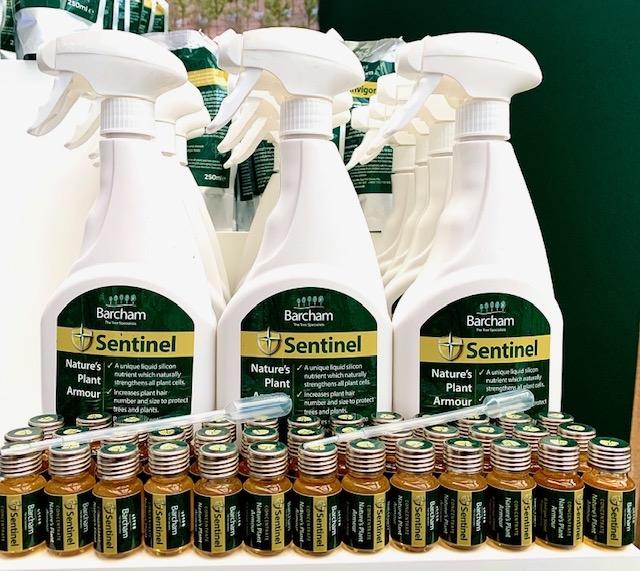Barcham Sentinel - bottle and vile