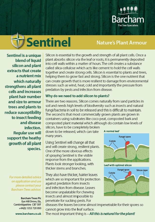 Full data sheet for Sentinel Page 1