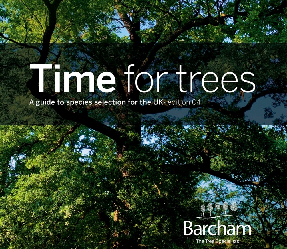 Time for trees - edition 04 (pre-purchase)