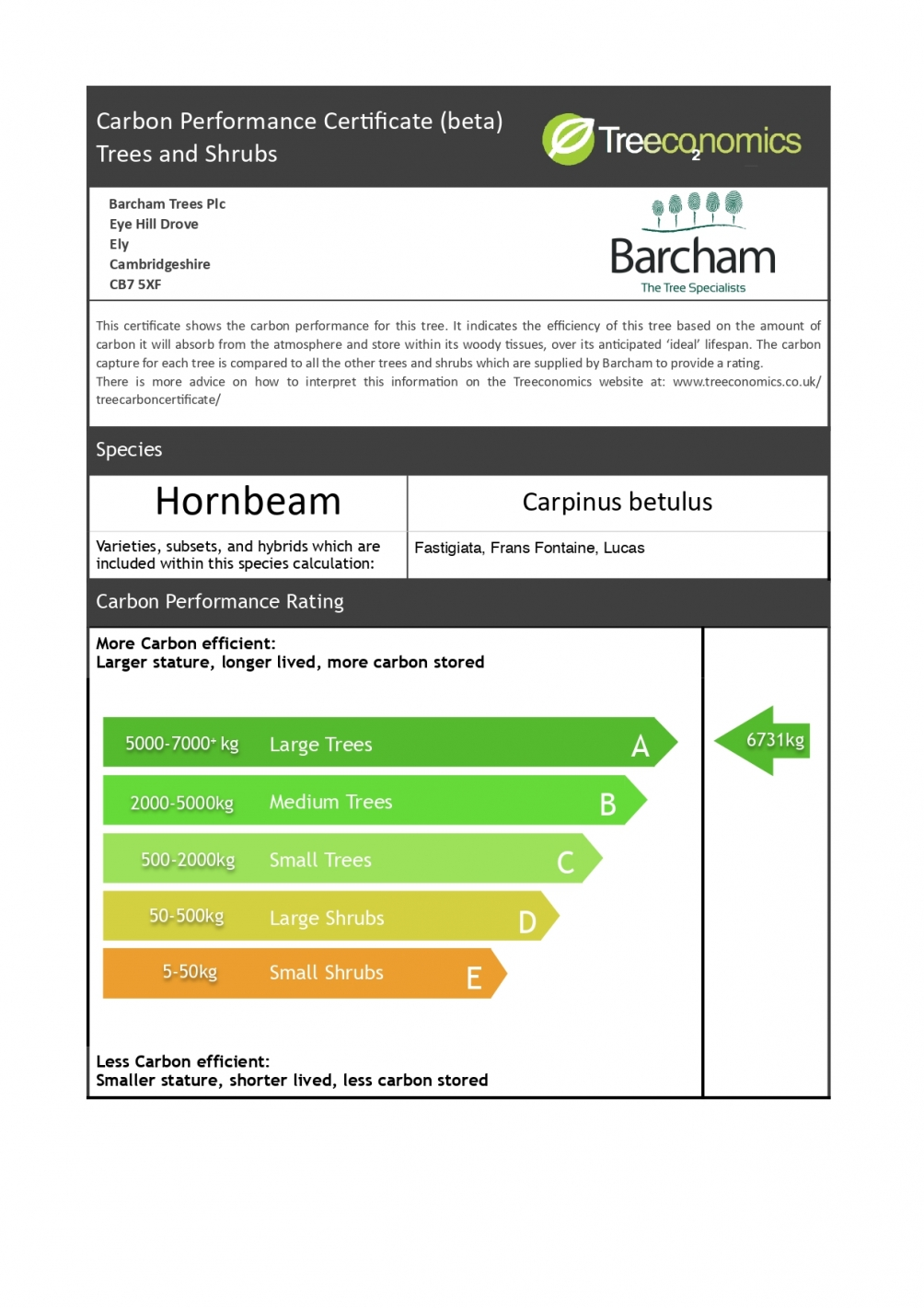 Carbon Rating