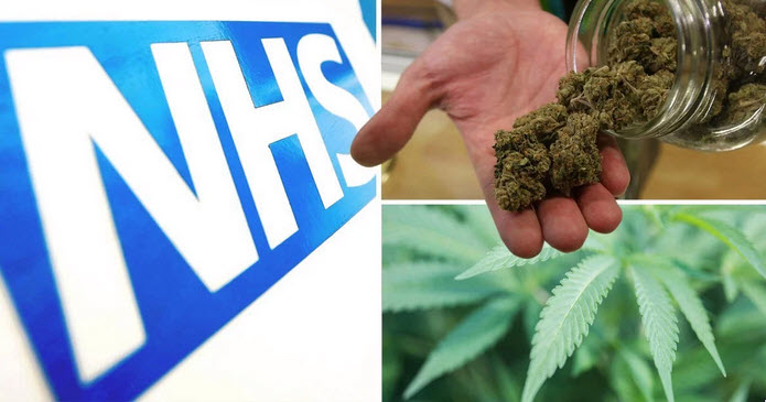 Asking Politicians to Order Doctors to Prescribe Cannabis is a Futile Quest