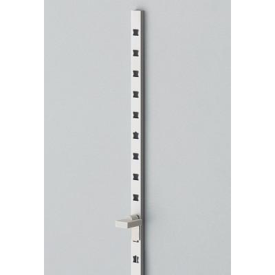 Shelf standard, recessed mount