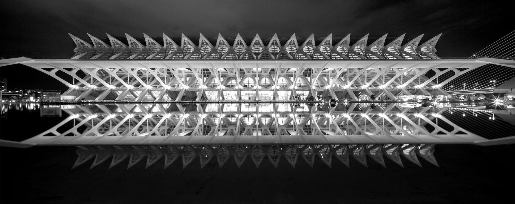 Ciudad de las Artes y las Ciencias in valencia has some great buildings including this symmetrical panorama of the science museum