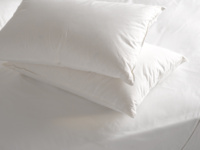 Goose down feather filled luxury bed pillows