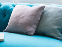 Feather filled classic Scatter beautiful cushions