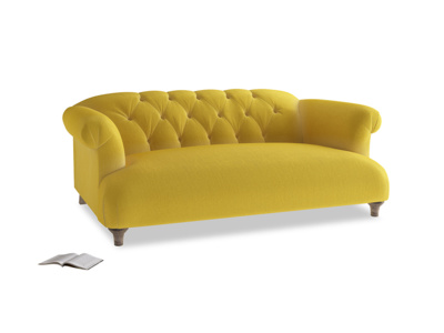 Medium Dixie Sofa in Bumblebee clever velvet