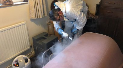 Bed Bug Steam treatment | bed bug removal in Maidstone.