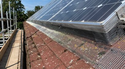 Solar panel pigeon proofing to stop pigeons nesting under the solar panels