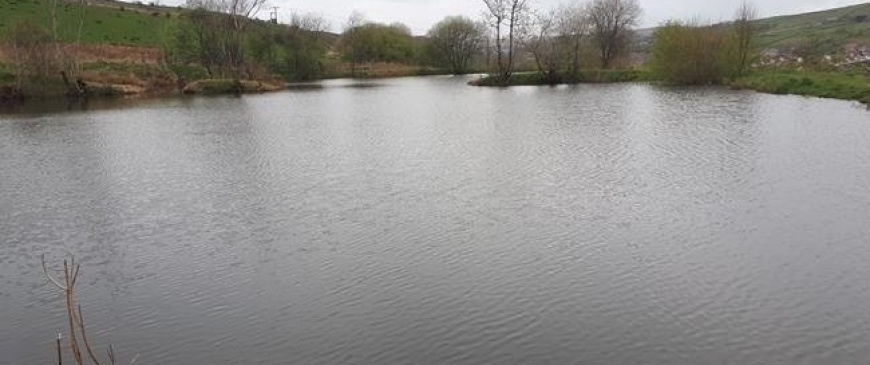 Fishing lake and castle included in June auction listings