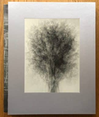 The photography book cover of Image Music Text by Idris Kahn. In slipcased hardcover grey with a tree.