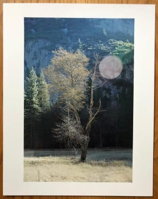 The photography print of Yosemite - Print Edition by Catherine Opie.