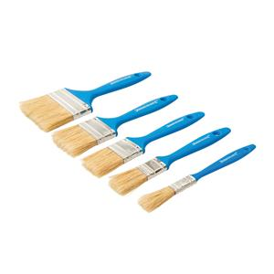 Disposable Paint Brush Set 5pce