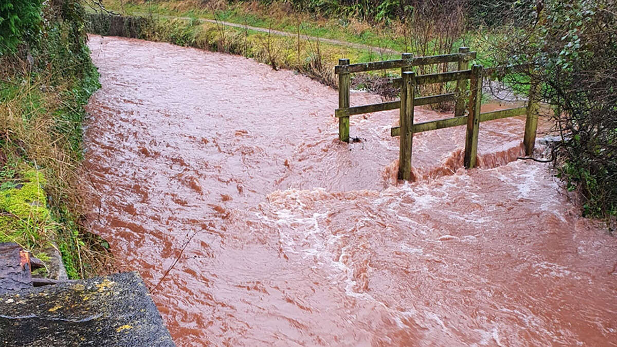 Can we tame the flood? - blog by Mark Lloyd