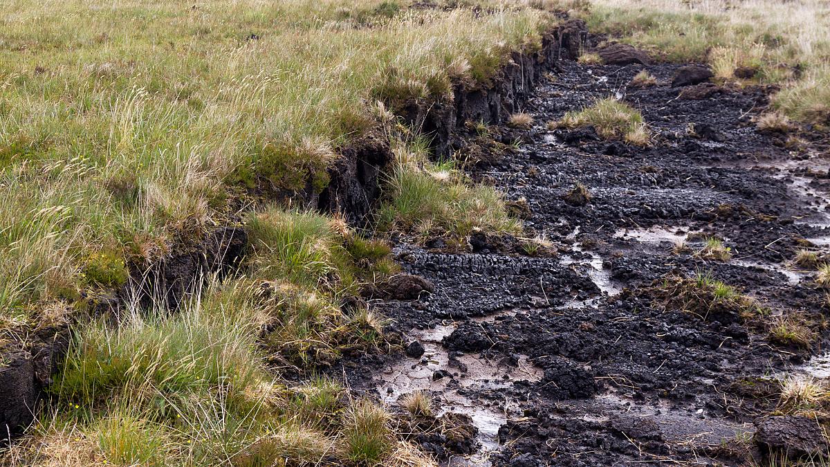 Protecting peat
