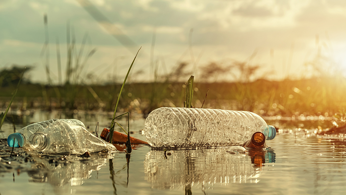 Plastic bottles in river