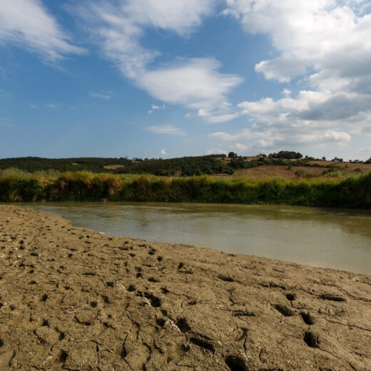 River in drought