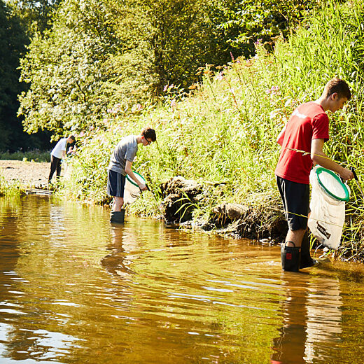 Volunteers litter picking in a river