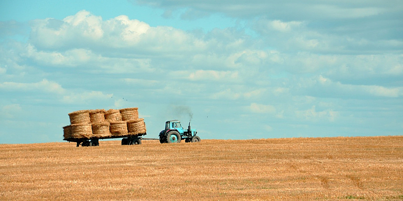 Tractor carrying hay bales in field