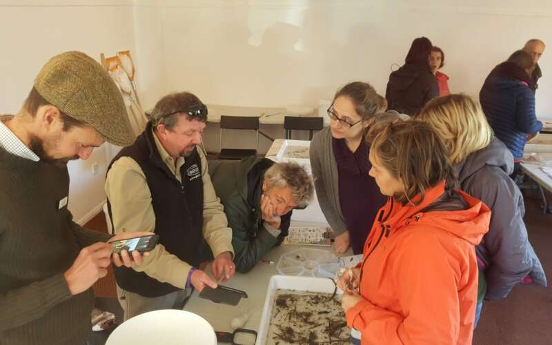 Riverfly monitoring training group