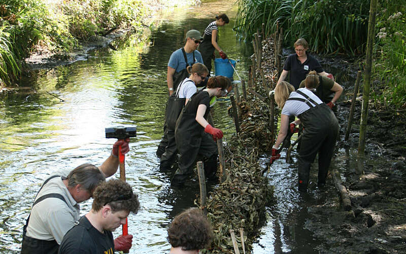 volunteers in river