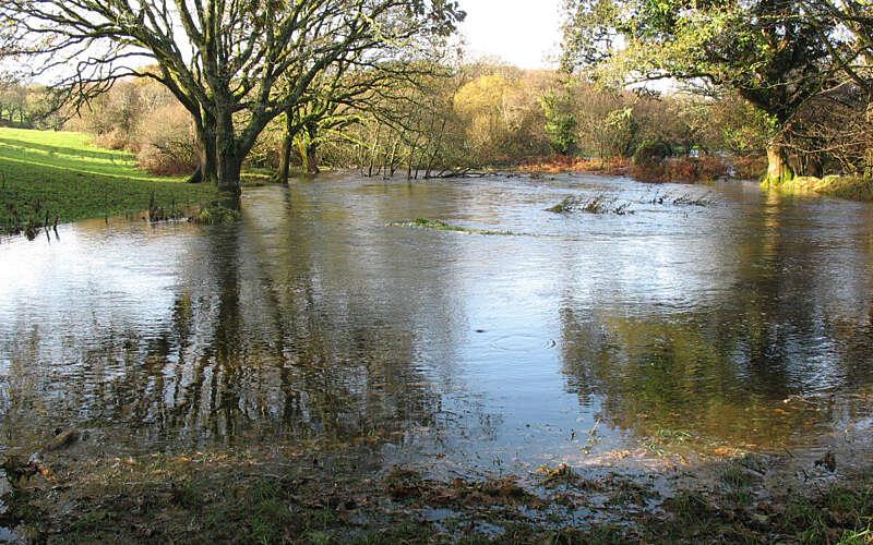 Web Tregrenna floods 11 10 002