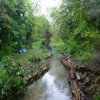 ARK River restoration