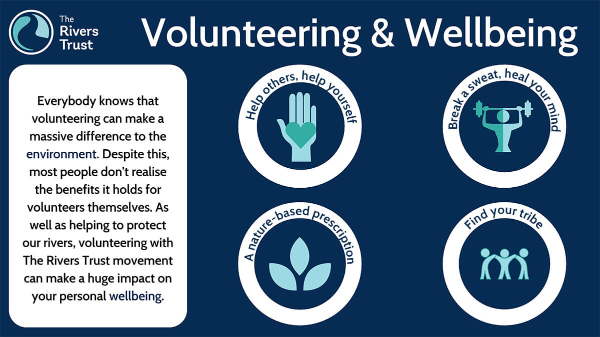 Benefits of Volunteering Infographic SMALL