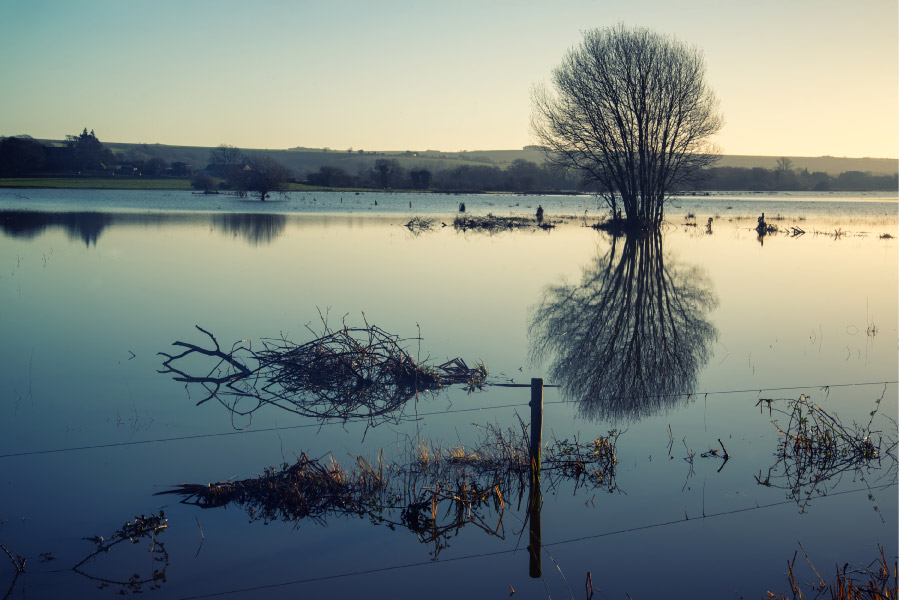 New study shows that Natural Flood Management could reduce flooding